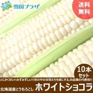 <予約>とうもろこし ホワイトショコラ 10本セ...