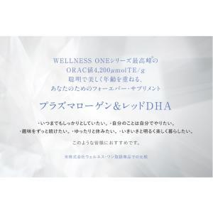 訳あり 賞味期限2020年2月 プラズマローゲン&レッドDHA|nilemart|19
