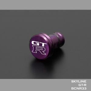 日産(NISSAN) GTR for R33 「イヤホンジャックカバー」|nimitts