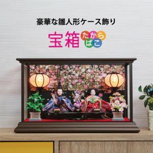 雛人形 ひな人形 おしゃれ かわいい おひなさま ケース飾り お雛様 コンパクト【2020年度新作】
