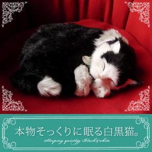 本物そっくりに眠るぬいぐるみ|パーフェクトペット|白黒猫|クリスマス プレゼント 誕生日