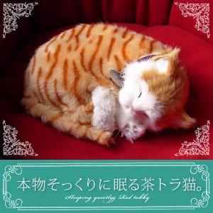 犬 ぬいぐるみ リアル 本物そっくりに眠るぬいぐるみ パーフェクトペット 茶トラ猫