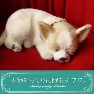 パーフェクトペット チワワ スムース ぬいぐるみ / 本物 そっくり リアル ペット メモリアル 犬...