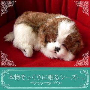 ぬいぐるみ 犬 リアル|本物そっくりに眠るシーズー|クリスマス プレゼント 誕生日