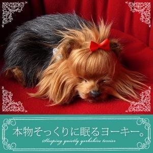 犬 ぬいぐるみ リアル 本物そっくりに眠るぬいぐるみ パーフェクトペット ヨークシャーテリア