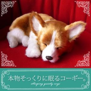 本物そっくりに眠るぬいぐるみ|パーフェクトペット|コーギー|クリスマス プレゼント 誕生日