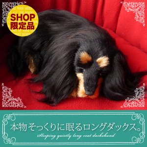 ぬいぐるみ 犬 リアル|本物そっくりに眠るダックス(ロングコート・ブラックタン)|クリスマス プレゼント 誕生日