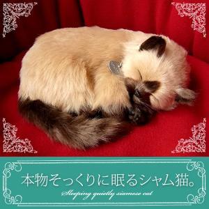 本物そっくりに眠るぬいぐるみ|パーフェクトペット|シャム猫|クリスマス プレゼント 誕生日