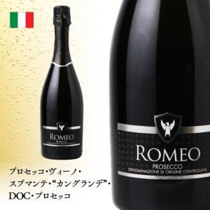 スパークリングワインセット スパークリングワイン 6本セット|ninsake-wine|05