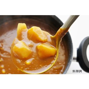 100g×3種 合計10袋 無添加・無脂肪・オーガニック 日本スープの有機野菜ポタージュ|nippon-soup|06