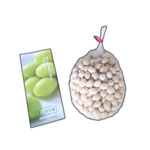 ぎんなん 殻つき おいしい お取り寄せ グルメ ギフト セミナリヨの丘銀杏畑 翡翠 銀杏 殻付 1kg|nipponmarche