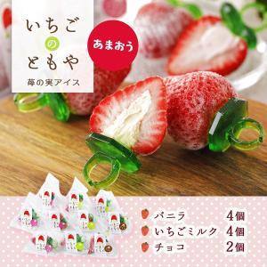 ギフト 福岡 志賀島 ストロベリー お取り寄せ 取り寄せ  [いちごのともや] あまおう苺 いちごの実アイス 10個|nipponmarche