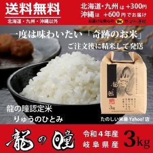 龍の瞳 3kg 岐阜県産 令和元年産米 白米 ご注文後に精米・発送 送料無料