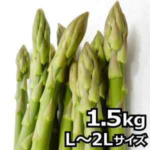 アスパラガス 北海道産 ギフト用 2L Lサイズ 1.5kg...