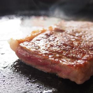 【プロ厳選の上質な飛騨牛 とろける食感で最高の贅沢を味わえます。】 【くちどけのよい霜降りと赤身の旨...