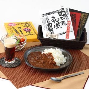 カレー専門店こだわりの詰め合わせセット 九州ご当地カレーセッ...