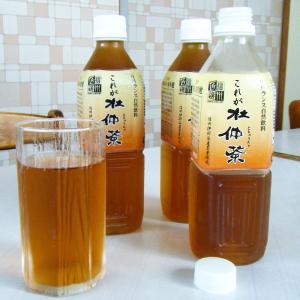 お茶 これが杜仲茶 500ml×24本 サンメクス 長野県 国産 ノンカフェイン トチュウ茶 ペットボトル 健康