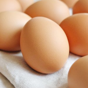 人生これか卵 6H 6個 詰合せ 卵 愛媛県産 常温 鶏卵 たまご 国産 愛媛 イヨエッグ