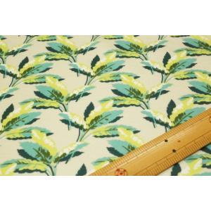 【リバティ 60/2天竺/LIBERTY】 Paradise Palm 1228160-J18B nippori-pakira