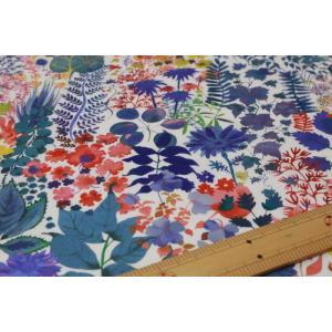 【リバティプリント/LIBERTY】(eternal collection) Fresco 3573151s-WE|nippori-pakira