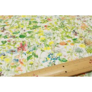 【リバティフランダースリネン/LIBERTY】Wild Flowers 3634251-J17A|nippori-pakira