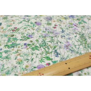 【リバティフランダースリネン/LIBERTY】Wild Flowers 3634251-J19F|nippori-pakira