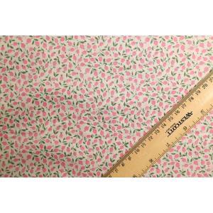 【リバティプリント/LIBERTY】Ed 3636005-CE nippori-pakira