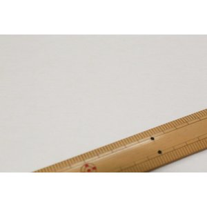 レクセルウール天竺 2018LB4(2) K17-040-01|nippori-pakira
