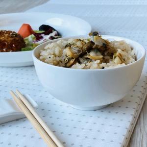 ライスボウル 4.5号 310ml ご飯 茶碗 白磁 おしゃれ レンジOK シンプル ホワイト|nishida-store