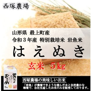 特別栽培米はえぬき岩魚米 (令和元年産)玄米 5kg