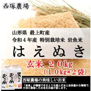 【新米】 特別栽培米はえぬき岩魚米 (平成30年産)玄米 20kg|nishiduka-farm