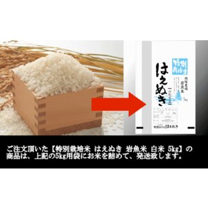 特別栽培米はえぬき岩魚米 (令和元年産)白米 5kg|nishiduka-farm|08