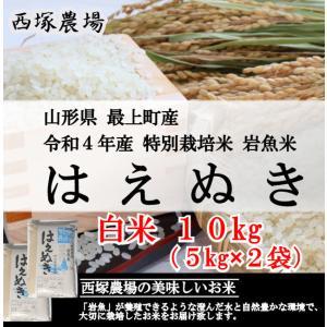 特別栽培米はえぬき岩魚米 (令和元年産)白米 10kg|nishiduka-farm