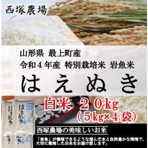 特別栽培米はえぬき岩魚米 (平成30年産)白米 20kg|nishiduka-farm