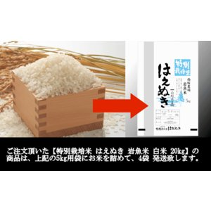 特別栽培米はえぬき岩魚米 (令和元年産)白米 20kg|nishiduka-farm|08