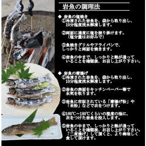 岩魚 10匹|nishiduka-farm|05