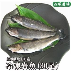 岩魚 30匹 焼き魚・揚げ物に最適な大きさ|nishiduka-farm