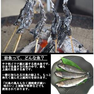 岩魚 50匹 nishiduka-farm 03