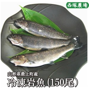 岩魚 150匹 焼き魚・揚げ物に最適な大きさ|nishiduka-farm