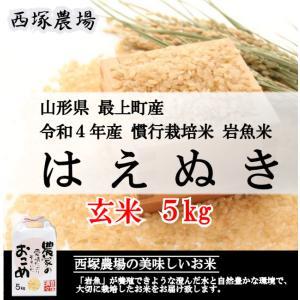 【新米】 慣行栽培米はえぬき岩魚米 (平成30年産)玄米 5kg|nishiduka-farm