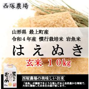 慣行栽培米はえぬき岩魚米 (令和2年産)玄米 10kg nishiduka-farm