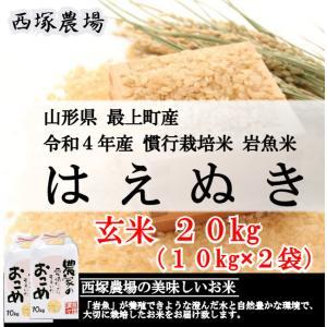 慣行栽培米はえぬき岩魚米 (平成30年産)玄米 20kg|nishiduka-farm