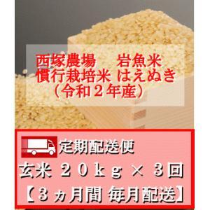 【定期配送便】慣行栽培米 はえぬき 岩魚米 (令和2年産)玄米 20kg× 3回 nishiduka-farm