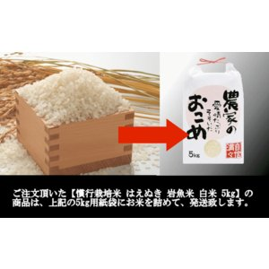 【新米】慣行栽培米はえぬき岩魚米 (令和2年産)白米 5kg|nishiduka-farm|08