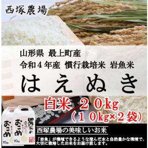 慣行栽培米はえぬき岩魚米 (令和2年産)白米 20kg nishiduka-farm