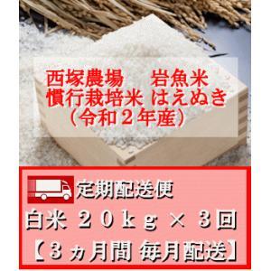 【定期配送便】慣行栽培米 はえぬき 岩魚米 (令和2年産)白米 20kg× 3回 nishiduka-farm
