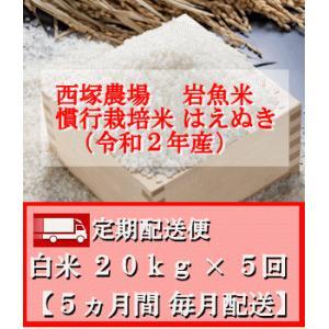 【定期配送便】慣行栽培米 はえぬき 岩魚米 (令和2年産)白米 20kg× 5回 nishiduka-farm