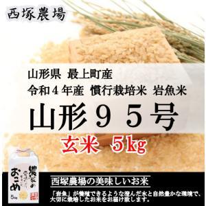 【新米】 慣行栽培米 山形95号 岩魚米 (平成30年産)玄米 5kg|nishiduka-farm