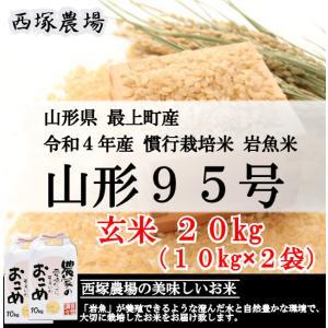 慣行栽培米 山形95号 岩魚米 (令和元年産)玄米 20kg