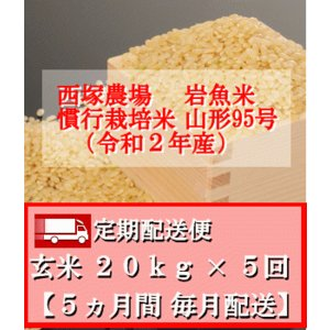 【定期配送便】慣行栽培米 山形95号 岩魚米 (令和2年産)玄米 20kg× 5回|nishiduka-farm